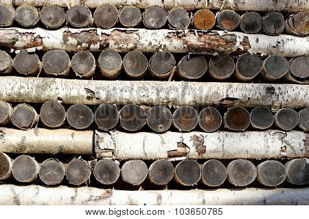 wall from birch logs