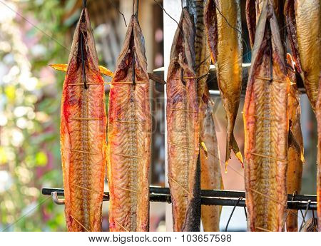 Hot smoked mackerels are hanged next to the smokehouse