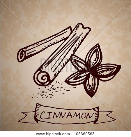 Hand drawn  cinnamon sticks