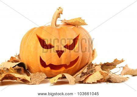 Halloween Pumpkin With Dry Leafs Isolated On A White