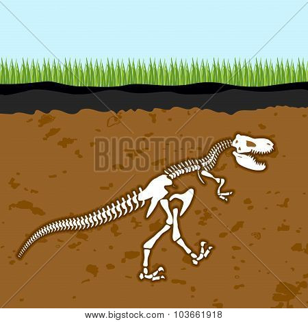 Skeleton Of  Tyrannosaurus Rex. Dinosaur Bones In Earth. Fossil Ancient Fearsome Animal. Slice Throu
