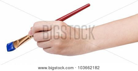 Hand Holds Artistic Flat Paintbrush With Blue Tip