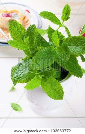 Fresh mint in white vase