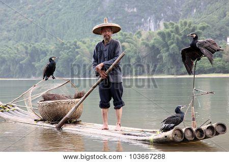 Yangshuo - June 18: Chinese Chinese Man Fishing With Cormorants Birds In Yangshuo, Guangxi Region, T