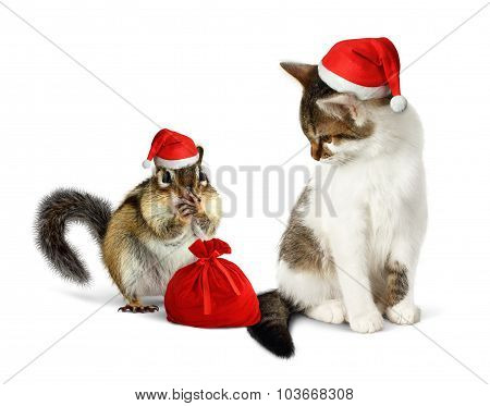 Funny Xmas Pets, Amusing Chipmunk And Cat With Santa Hat And Sack