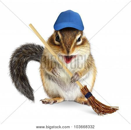 Funny Chipmunk With Broom, Cleaning Concept