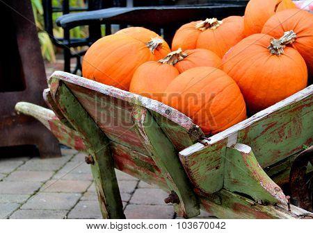 Big Mix Of Halloween Pumpkins, Fall