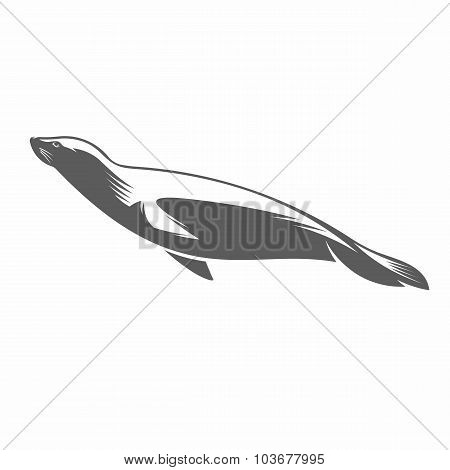 Fur seal in water black and white vector illustration