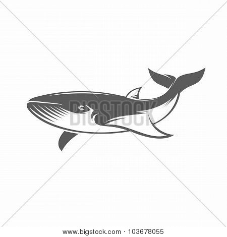 Whale in water black and white vector illustration