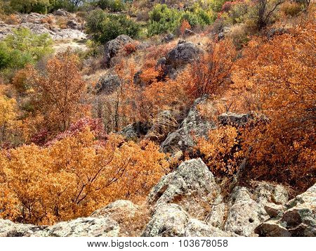 Southern Bug valley in autumn