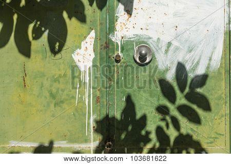 Leaves Shadow On Green Color Door