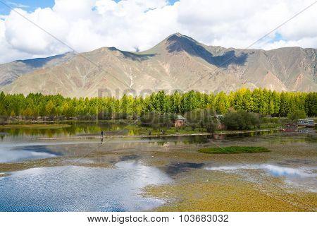Beautiful landscape in autumn in Tibet, China