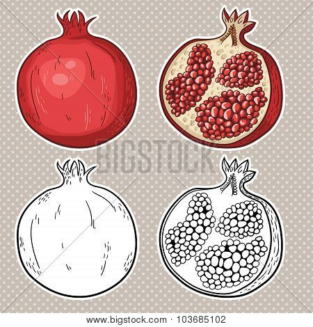 cut and sliced pomegranate