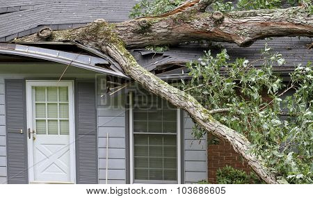 Tree Destroys House During A Storm