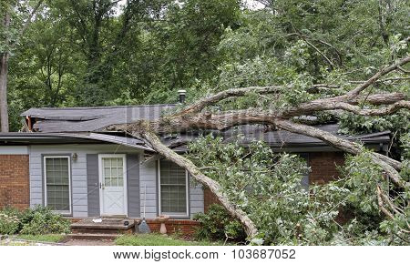 House Roof Caved In By Large Tree During Storm