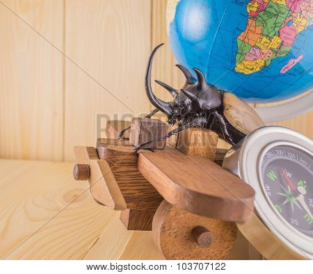 Image Of Five Horn Beetle And Wooden Plane