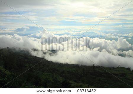the mist on the mountain
