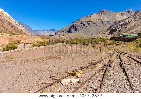 Railway Station, The Andes Around Mendoza, Argentina