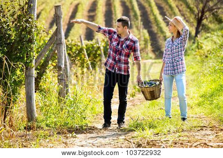 Couple at vineyard holding a wicker basket with grapes between themselves