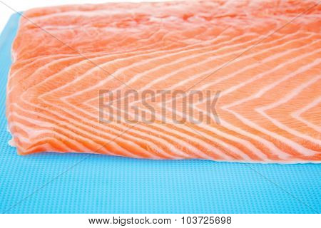 fresh uncooked red fish fillet on blue plate over white