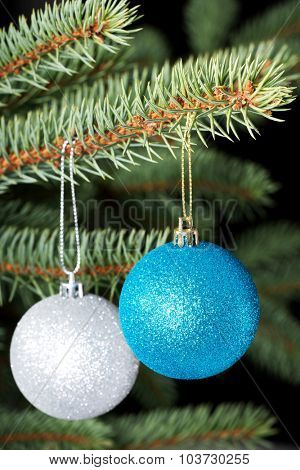 Two christmas balls hanging on a tree. Over  black background.