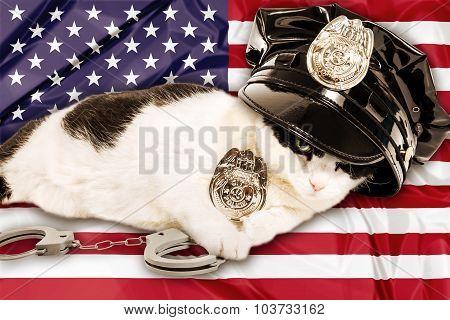 American Cop Cat
