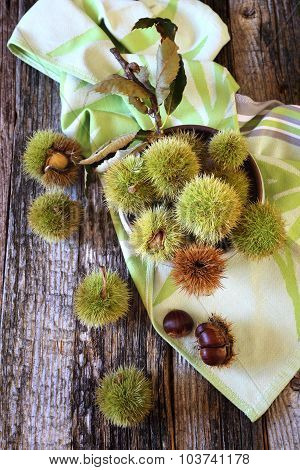 Close Up Of Sweet Chestnuts