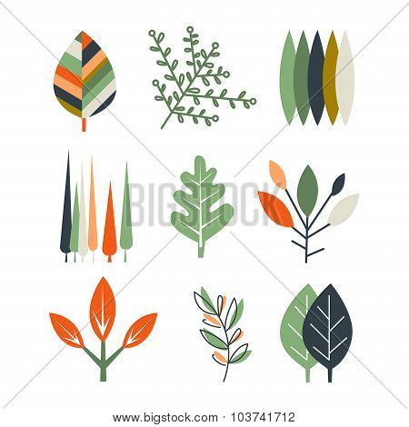 Leaf Set in Flat Design