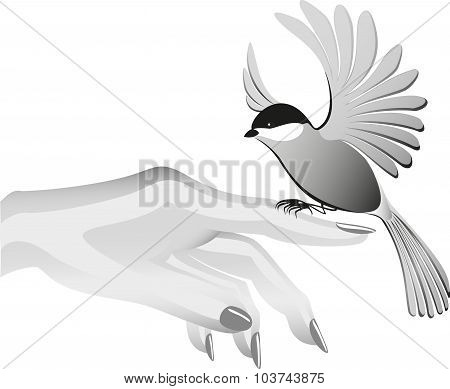 Black and white drawing, bird sits on the finder. EPS10 vector illustration