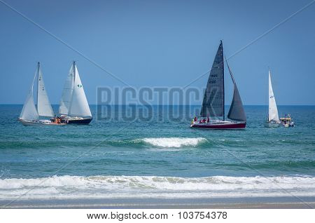 Sail boats on the ocean