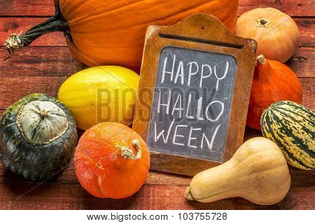 Happy Halloween - white chalk handwriting on a small blackboard surrounded by pumpkin and winter squash