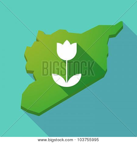Long Shadow Syria Map With A Tulip