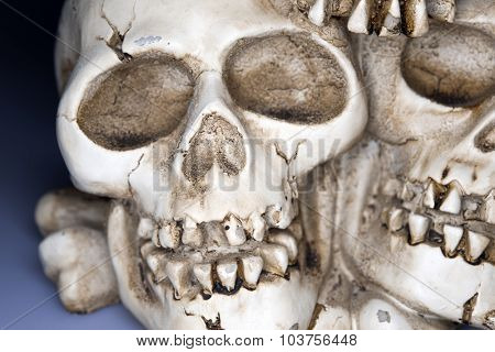 Old weathered human skull - Halloween background