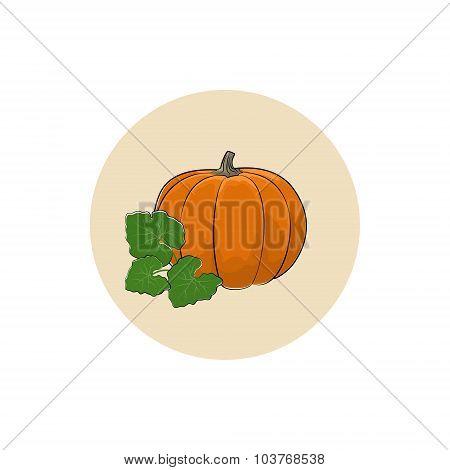 Icon of a Ripe Orange Pumpkin