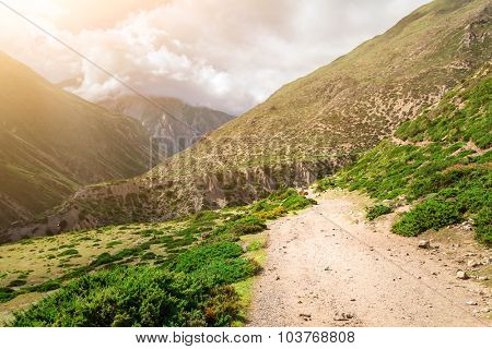 rural road and green plants in mountains with cloudy sky in Nepal, Annapurna trekking