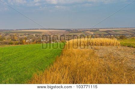 Autumnal landscape in village Dovzhik in Ukraine