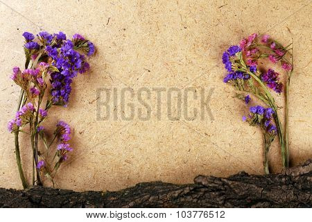 Wildflowers and bark on plywood background