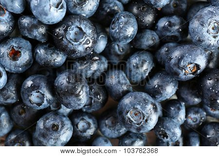 Heap of tasty ripe blueberries close up