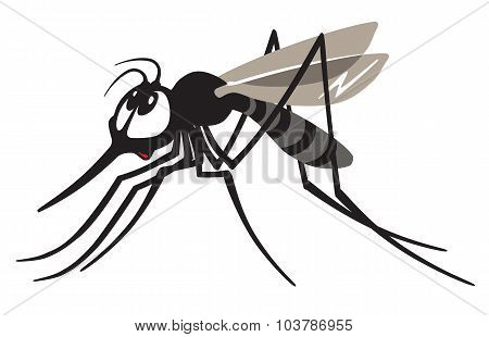 cartoon gnat