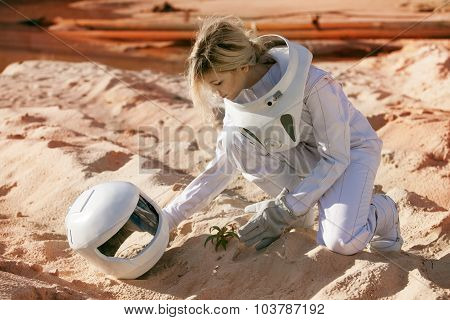 Grow plants on Mars, futuristic astronaut without a helmet,  another planet, image with the effect o