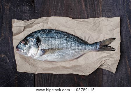Raw Dorada On The Crumpled Seet Of Paper