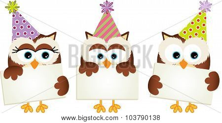 Birthday owls with signboards
