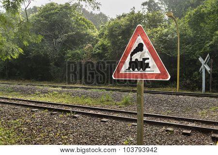Train Tracks And Signpost At Iguazu Park In Argentina