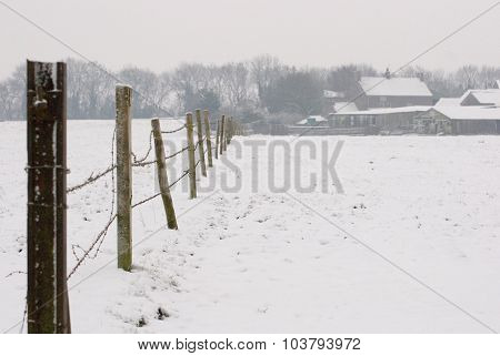 Fence Posts in Snow