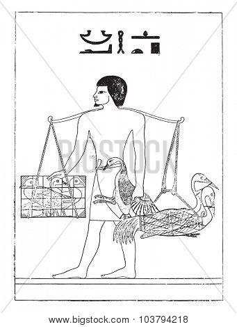 A bird breeder in Egypt, vintage engraved illustration.