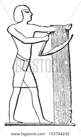 Egyptian reaper, vintage engraved illustration.