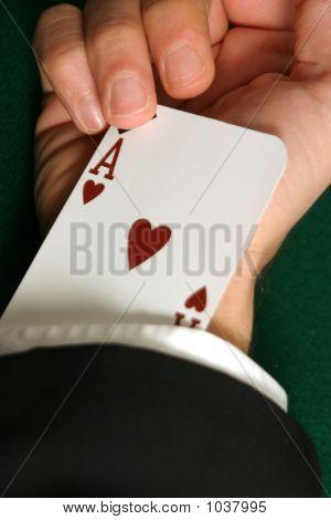 Ace Sleeve