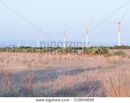 Wind Turbines In The Country