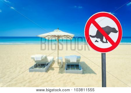 No Dog Pooping Sign On The Beach