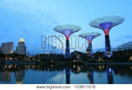 Supertree Grove Singapore cityscape